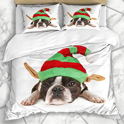 Soefipok Bettbezug-Sets Freund Weiß Boston Terrier Weihnachtsmütze auf Elf Urlaub Kostüm Hund Baby Beste Big Looking Mikrofaser-Bettwäsche mit 2 Pillow - Boston Terrier Baby Kostüm