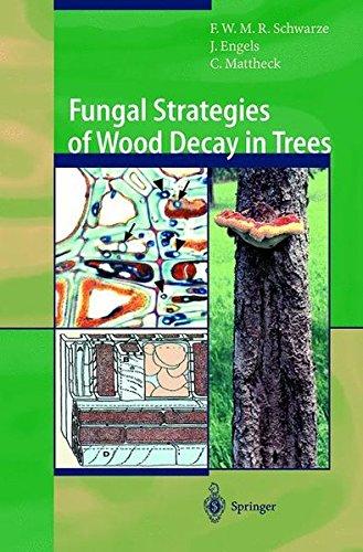 Fungal Strategies of Wood Decay in Trees por Francis W. M. R. Schwarze