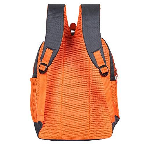 Sassie Grey Polyester 41 Ltr School Backpack Image 4