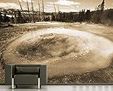 selbstklebende Fototapete - Morning Glory Pool - sephia - sepia - 200x150 cm - Tapete mit Kleber – Wandtapete – Poster – Dekoration – Wandbild – Wandposter – Wand – Fotofolie – Bild – Wandbilder - Wanddeko