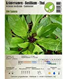 Kräutersamen - Basilikum/Ocimum basilicum - verschiedene Sorten(Thai)