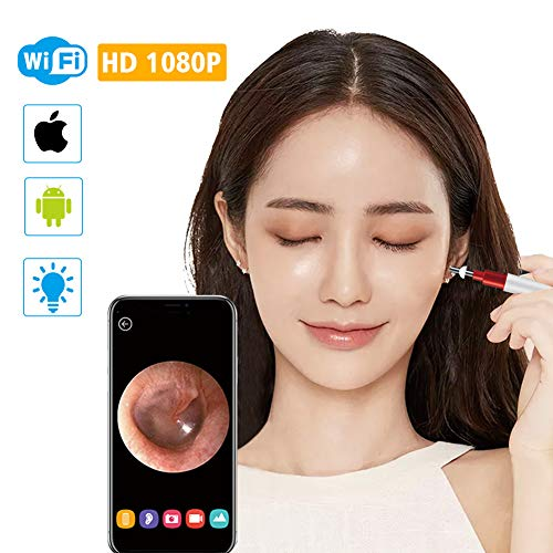 3,9mm WiFi Ohr Otoscope Wireless HD1080P Digital Endoskop Ohr Inspektionskamera Earwax Reinigungswerkzeug mit 6 Led für IOS Android,Silver (Mini-digital-projektor Apple)