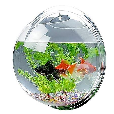 YXYXN HäNgende Wandhalterung Aquarium, Kreative Acryl Fish Bowl, Transparente Aquarium FüR Goldfische Und Betta Plant Vase Home Decoration