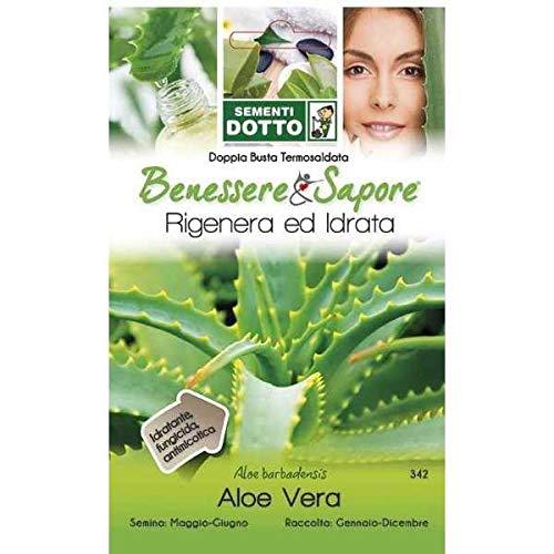 Sementi Dotto - Aloe Vera
