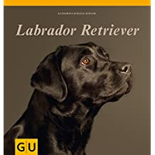 Labrador Retriever (GU Altproduktion HHG)