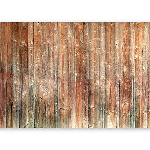 murando Papier peint intissé 800x280 cm Décoration Murale XXL Poster Tableaux Muraux Tapisserie Photo Trompe l'oeil Boisf-A-0514-x-m