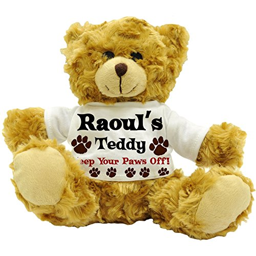 raouls-teddy-keep-your-paws-off-personalised-male-name-plush-teddy-bear-22cm-high-approx
