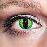 KwikSibs farbige grüne Kontaktlinsen Katzenaugen 1 Paar (= 2 Linsen) weiche Funlinsen inklusive Behälter und 50ml Pflegelösung (Stärke / Dioptrie: 0 (ohne))