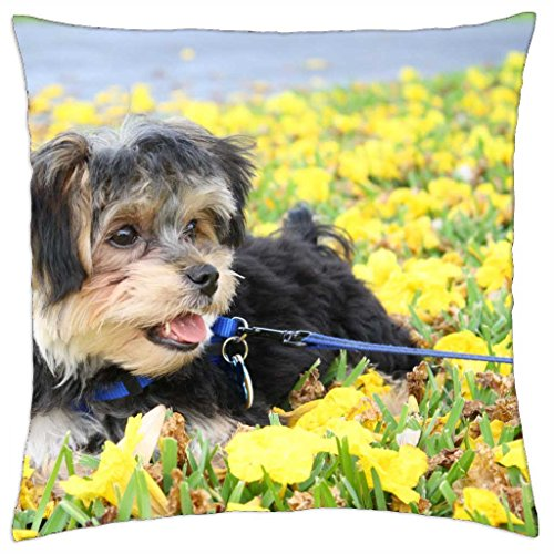 'irocket – Sweet Cookie en Yellow field – Throw Pillow Cover (24