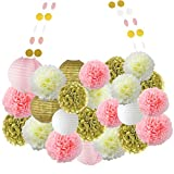 #8: 26 Pcs Pom Pom Craft Lanterns Tissue Paper Flower Garland for Wedding Party Decoration (Gold and Beige and Pink)