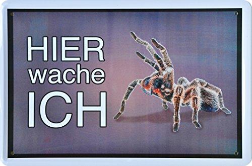 Blechschild Hier wache ich ! Vogelspinne Tarantel 20 x 30 cm Metal Sign XDG105