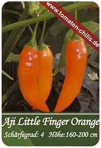 Chili Samen - 15 Stück - Aji Little Finger Orange