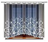 Gardine; Store; Vorhang transparent, elegant weiß, Kräuselband (160 x 300 cm)