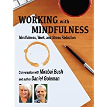 Working with Mindfulness: Mindfulness, Work, and Stress Reduction (Working with Mindfulness: Research and Practice of Mindfull Techniques in Organizations Book 2) (English Edition)