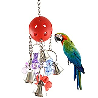 1xToruiwa Birds Toy Chewing Toy Hanging Ball Bell Toy for Parrot Macaw African Grey Eclectus Budgies Parakeet Cockatoo Cockatiel Conure Lovebird Cage Accessories Colorful 1xToruiwa Birds Toy Chewing Toy Hanging Ball Bell Toy for Parrot Macaw African Grey Eclectus Budgies Parakeet Cockatoo Cockatiel Conure Lovebird Cage Accessories Colorful 51gZiAb4TqL