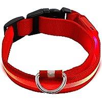 KEKU Collar LED para perro o mascota, collar de seguridad LED para perro, gran visibilidad y mejora la seguridad, color rojo, mediano