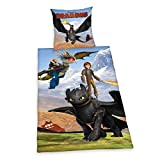 Herding 442658050 Bettwäsche Dragons, Kopfkissenbezug 80 x 80 cm und Bettbezug 135 x 200 cm, 100% Baumwolle, Renforce