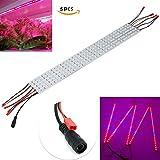 XJ LED 10W 36-LEDs 12 V DC LED wachsen Strip Bar Light LED Pflanzenlampe für Zimmerpflanzen Blume Wachstumslampe(5 Stück, 1/2 Meter, rot 660 nm und Blau 445nm)