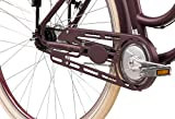 Unbekannt Tretwerk Traveler Retro 28 Zoll E-Bike Damen Merlot Test