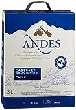 Andes Cabernet Sauvignon Chile Qualitätswein trocken (1 x 3 l)