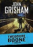 Image de El secuestro (Theodore Boone 2)