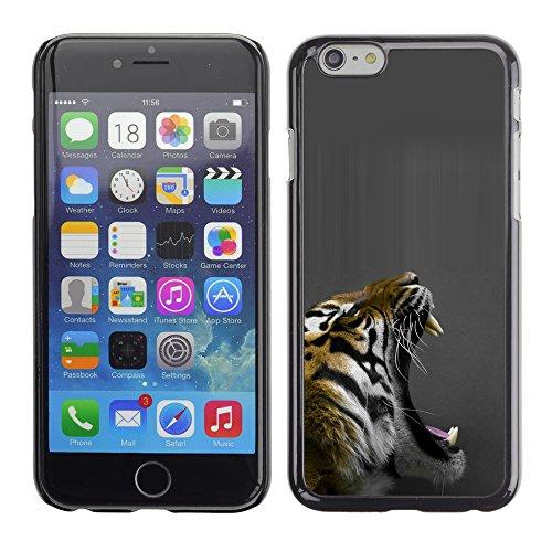 Graphic4You Baby Tiger Tier Design Harte Hülle Case Tasche Schutzhülle für Apple iPhone 6 / 6S Design #4