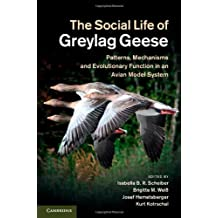 The Social Life of Greylag Geese: Patterns, Mechanisms and Evolutionary Function in an Avian Model System