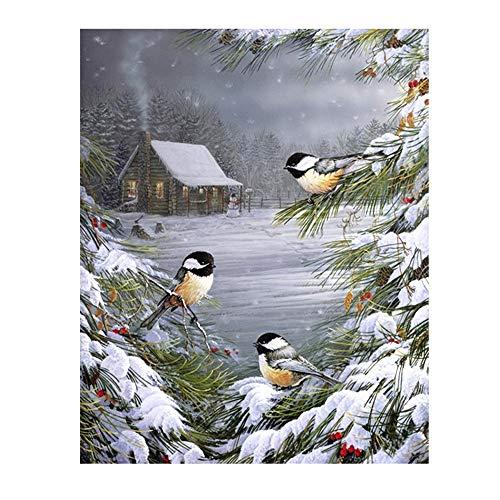 QYY DIY Ölgemälde, Paint by Number Kit für Erwachsene Kinder Studenten Anfänger Leinwand mit Pinsel und Acrylpigment, Zeichnen mit Pinsel Weihnachtsdekor (ohne Rahmen),A6 (Flugzeug Paint Kit)