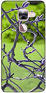 The Racoon Lean printed designer hard back mobile phone case cover for Letv Le 2. (branch bud)