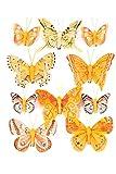 Heitmann Deco - Schmetterlinge mit Clip zur Befestigung - 10-teiliges Deko-Set in orange verziert - verschiedene Größen (Bild: Amazon.de)