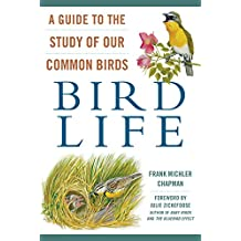 Bird Life: A Guide to the Study of Our Common Birds