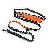 WYXIN Verstellbarer Hundetraktionsgurt mit Wasserdichten Taschen Für Sport-Laufseil,Orange