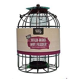 Kingfisher mangiatoia per uccelli per dadi con protezione scoiattoli