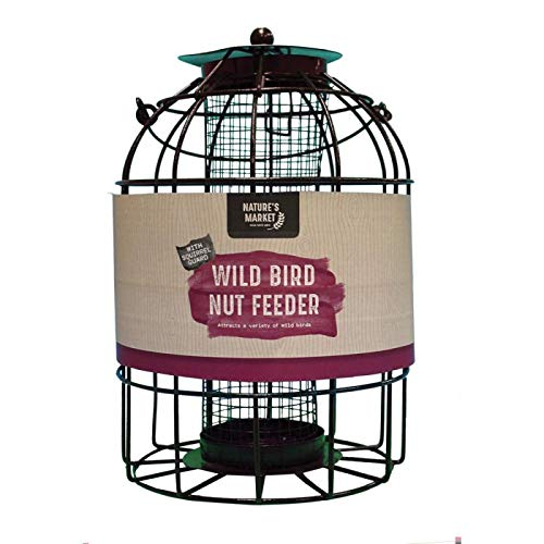 Kingfisher Mangeoire pour Oiseaux avec Protection Contre Les écureuils