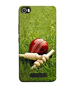 PrintVisa Red Cricket Ball On The Grass With Bales 3D Hard Polycarbonate Designer Back Case Cover for Lava Iris X8