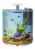 Tetra AquaArt Explorer Line Aquarium Komplett-Set 60 Liter weiß, (gewölbte Frontscheibe, langlebige LED-Beleuchtung, ideal für die Haltung von tropischen Zierfischen)
