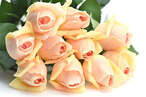 fiveseasonstuffr-10-steli-tocco-realistico-seta-rose-dal-gambo-lungo-53cm-petali-sentire-e-guardare-