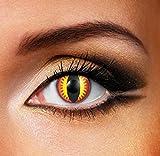 Funky Vision Kontaktlinsen - 12 Monatslinsen, Dragon Eye, Ohne Sehstärke, 1 Stück