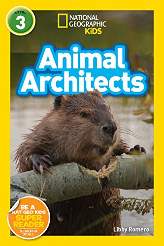 National Geographic Readers: Animal Architects (L3) (National Geographic Readers, Level 3) (English Edition)