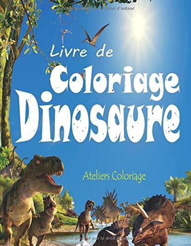 Livre de Coloriage Dinosaure: 40 Dessins Réalistes de Dinosaures pour Garçons et Filles de 4 à 12 ans ; Peinture Magique Dinosaure ; Livre de ... Magique Dinosaure, Coloriage Enfant Dinosaure par Ateliers Coloriage