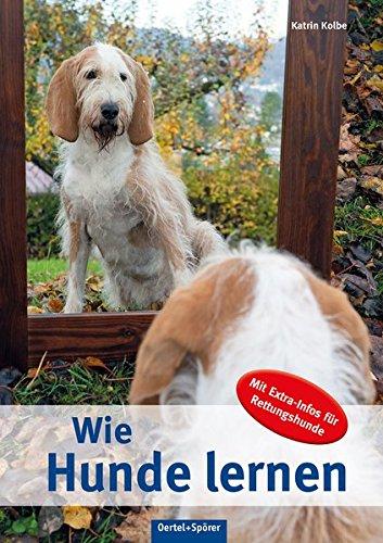 Wie Hunde lernen: Mit Extra-Infos für Rettungshunde