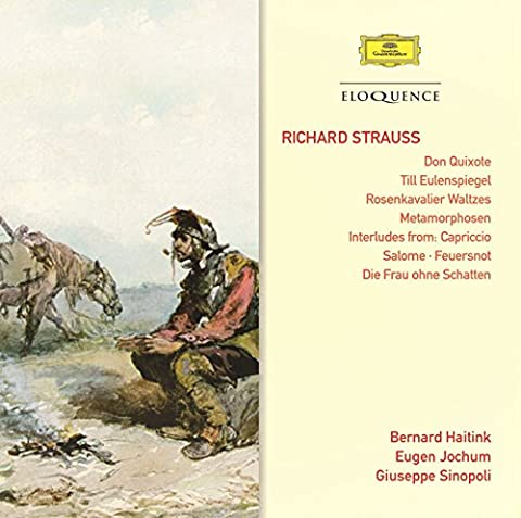 Strauss: Don Quixote / Also Sprach Zarathustra/ Till Eulenspiegel/ Métamorphoses/ Dances des 7 voiles [Import anglais]