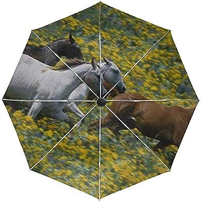 Paraguas automático Hierba Caballos Corriendo Viaje Conveniente A Prueba de Viento Impermeable Plegable Automático Abrir Cerrar