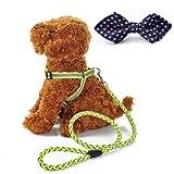 BABYS'q Nachtreflexions-Hundeleine Hundeleine Und Geschirre Eingestellt Mit Mode-Hundebogen-Kragen Für Weihnachten Kleine/Mittlere / Große Hunde/Katzen,Green
