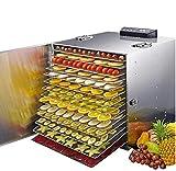 DUANJY Secadora de Alimentos para el hogar, 15 Rejillas de Acero Inoxidable, Fruta y deshidratadores de Carne Seca