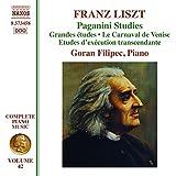 Liszt:Piano Vol. 42
