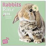 Grupo Erik–Calendario de pared 2019Studio Pets conejito 30x 30cm