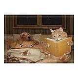 CaknQizawyy Brown Finestra Giallo Divano Gatto e Cane Libro Giallo Antiscivolo Bagno Doccia Cucina Velluto Cartoon HD Paesaggio Cuscino Interno