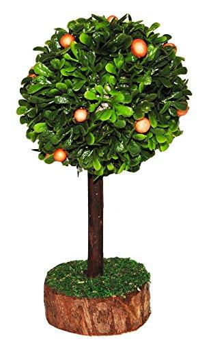 Unbekannt Orangenbaum - Miniatur 13 cm - Miniatur / Maßstab 1:12 - Baum Orangen - für Puppenstube / Puppenhaus u. Eisenbahn Platte - Garten Bäume / Zitrusfrüchte - Zitr.. - Zitrusfrüchte Bäume