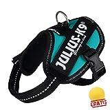 Trixie JULIUS Mini SJMM +BALL Gratis Powergeschirr Baby 2/Mini Hundegeschirre Hunde Geschirre (M(49-67 cm/22 mm), petrol)